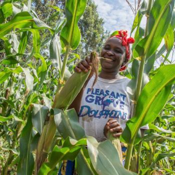 Analyzing the Impact of Musoni Kenya