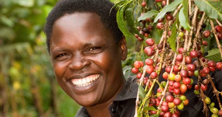 Ibero Uganda